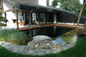 Wasser - Teich (11) 2